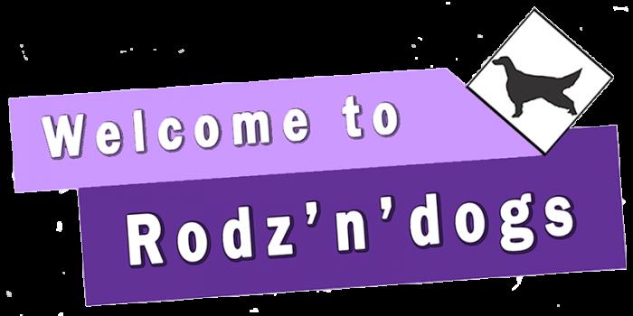 Rodzndogs Dog Services
